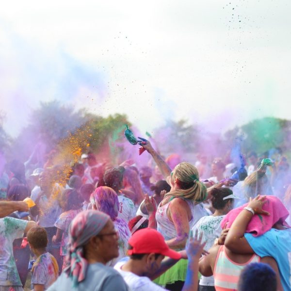 St Catherine's Rhino Walk and Colourfest
